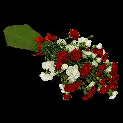 Blumenstrauß aus Spraynelken