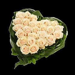 Das Herz aus den weißen Rosen