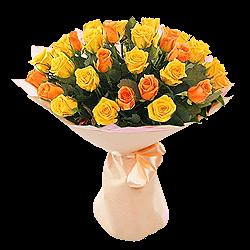 Orange und gelbe Rosen