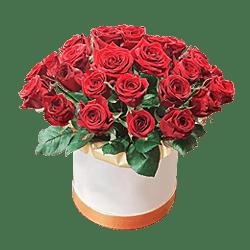 Roten Rosen in einer Box