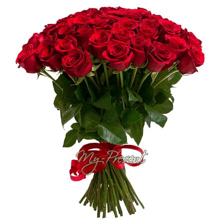 Blumenstrauß aus roten Rosen (60 cm.)