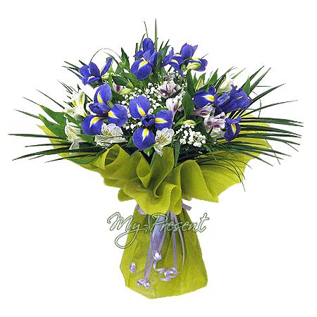 Blumenstrauß aus Irisen und Alstroemerien