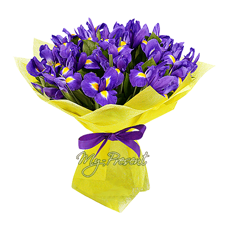 Blumenstrauß aus Irisen