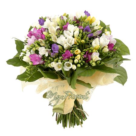 Blumenstrauß aus Frezia