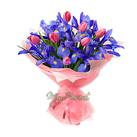Blumenstrauß aus Irisen und Tulpen