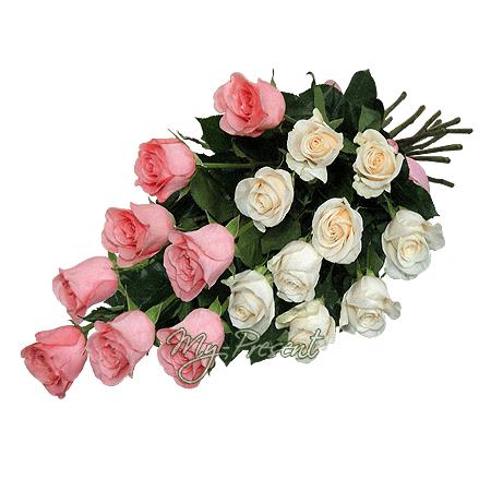 Blumenstrauß aus den weißen und rosigen Rosen (80 cm.)