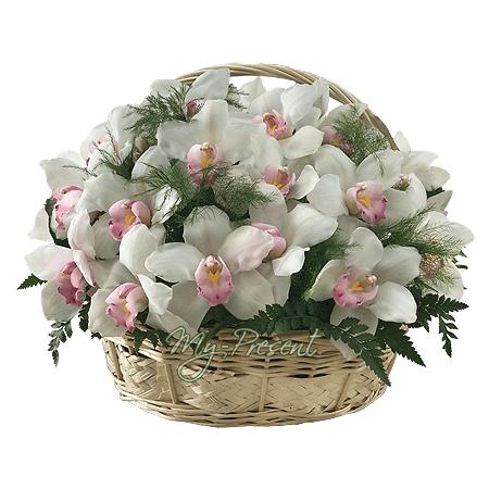 Korb mit Orchideen