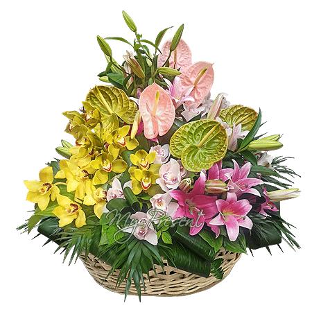 Korb mit Lilien, Orchideen, Anthurien