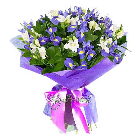 Blumenstrauß aus Irisen und Frezia