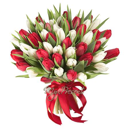 Blumenstrauß aus roten und weißen Tulpen