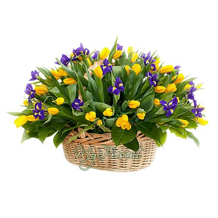 Korb mit Tulpen und Irisen