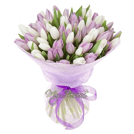 Blumenstrauß aus  lila und weißen Tulpen