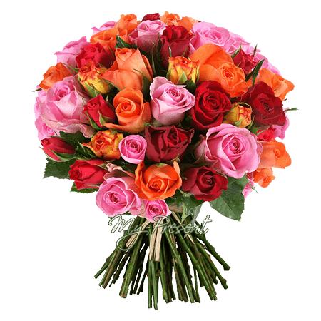 Blumenstrauß aus den vielfarbigen Rosen (50 cm.)
